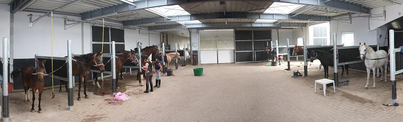 Paardenwinkel QUUS