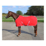 Deken Fleece Color Met Singels Fel Rood qhp-6121-ro