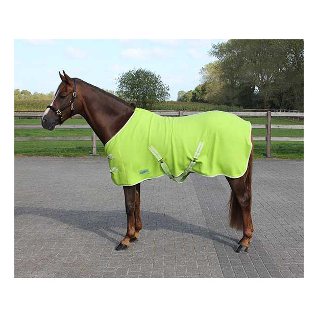 Deken Fleece Color Met Singels Lime qhp-6121-li