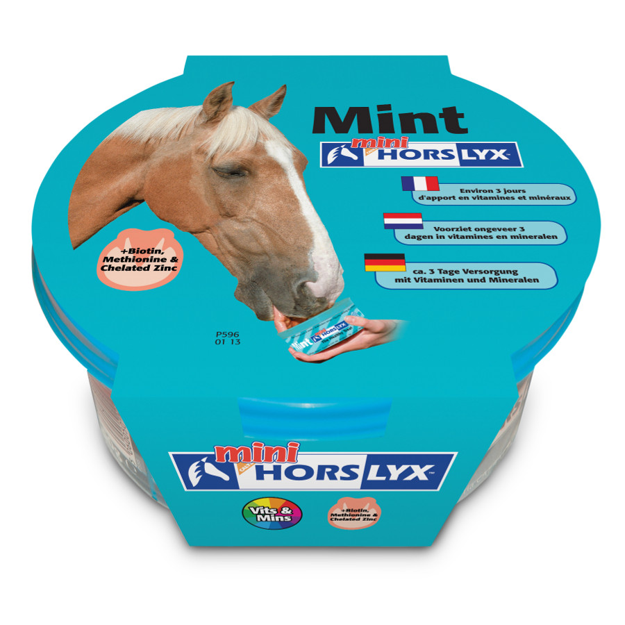 Liksteen Horslyx Mint Mini