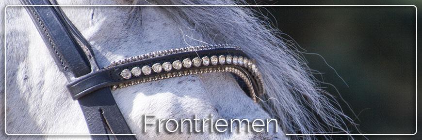 frontriem paard