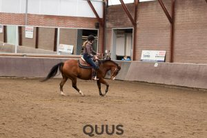 quus-experience-2016-8w7a8701