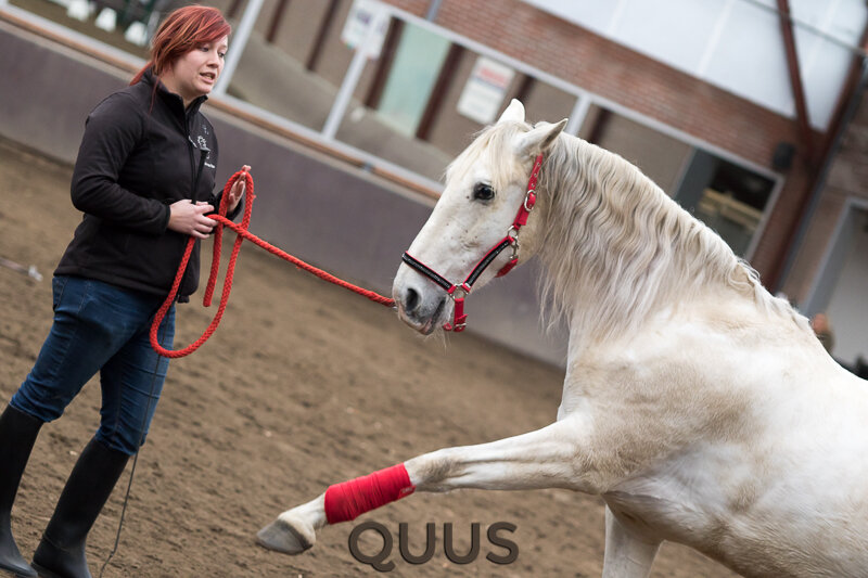 quus-experience-2016-8w7a8868
