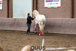 quus-experience-2016-8w7a8886