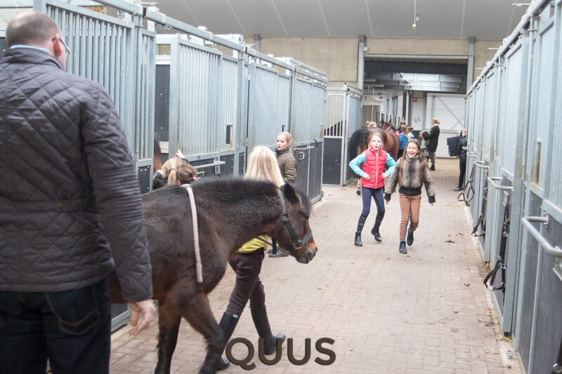 quus-experience-2016-8w7a9157