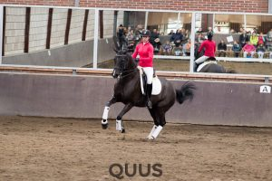quus-experience-2016-8w7a9363