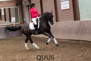 quus-experience-2016-8w7a9374