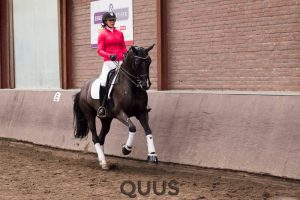 quus-experience-2016-8w7a9395