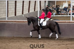 quus-experience-2016-8w7a9427