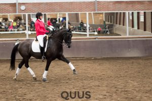 quus-experience-2016-8w7a9443