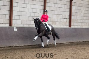 quus-experience-2016-8w7a9461