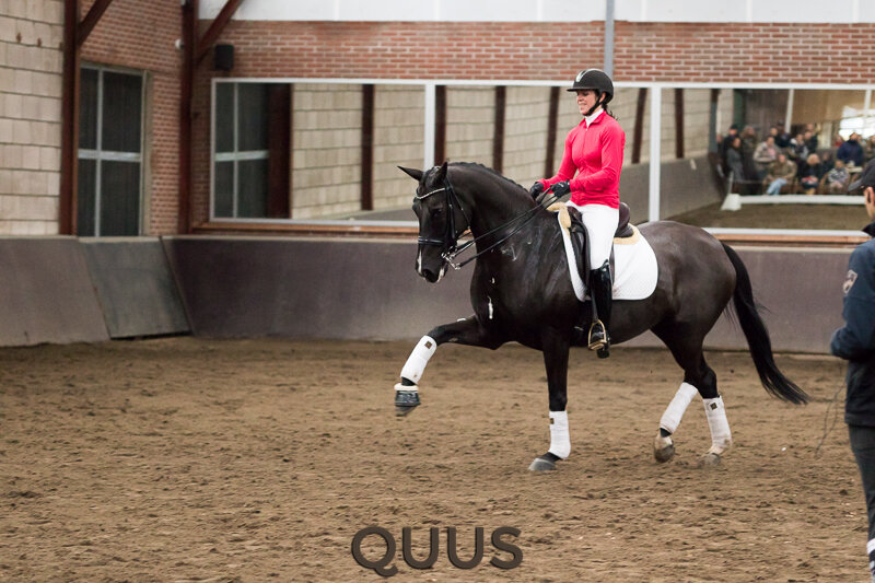 quus-experience-2016-8w7a9513