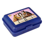 pv lunchbox