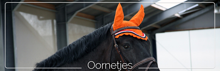 oornetje-paard