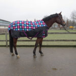 qhp-turnout-rug-luxury-block