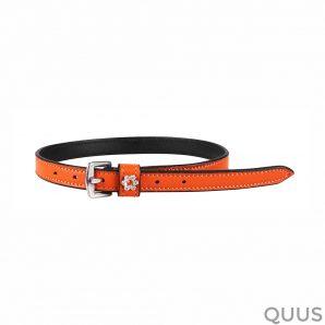 qhp-sporenriempje-callisto-oranje-2127