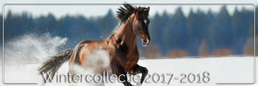 Wintercollectie 2017-2018