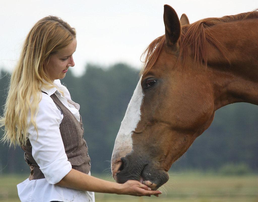 weinig tijd om paard te rijden