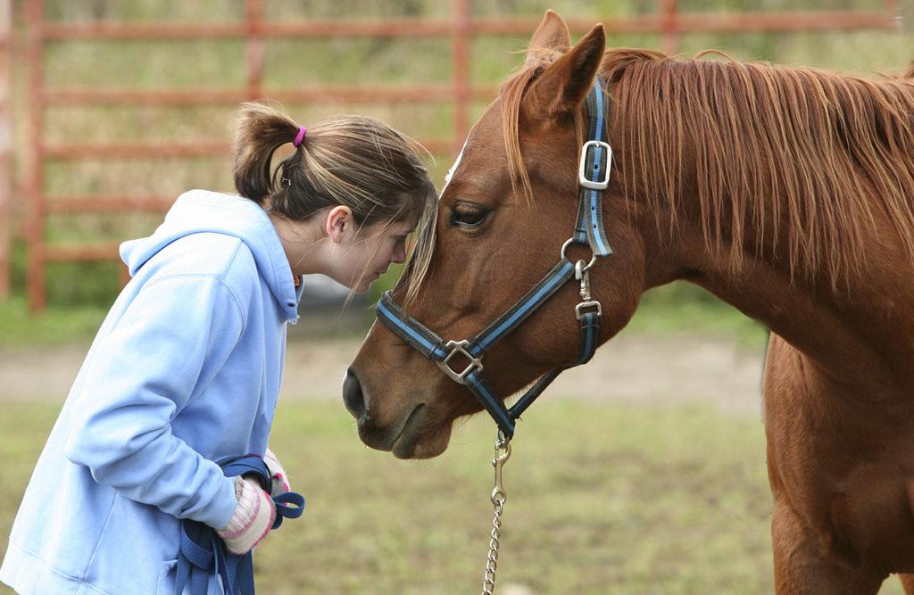 sterke band met je paard